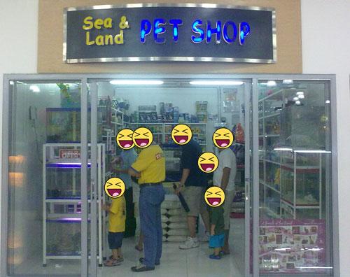 sea and land pet shop shopwise cubao crazy apple